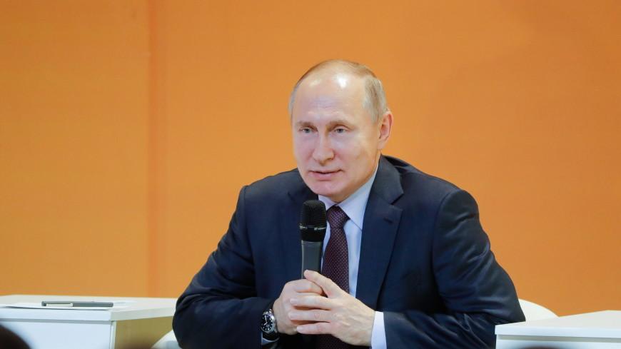 Путин рассказал о своем фото верхом на медведе