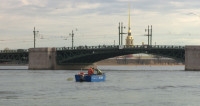 Рыба с ароматом огурца: почему в Петербурге так любят корюшку