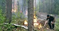 Поселок в Хабаровском крае может сгореть из-за пала травы