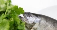 Приготовленная рыба выпрыгнула из тарелки посетителя ресторана