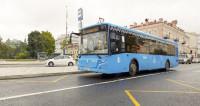 Прямые автобусы будут ходить из центра Москвы до «Лужников»