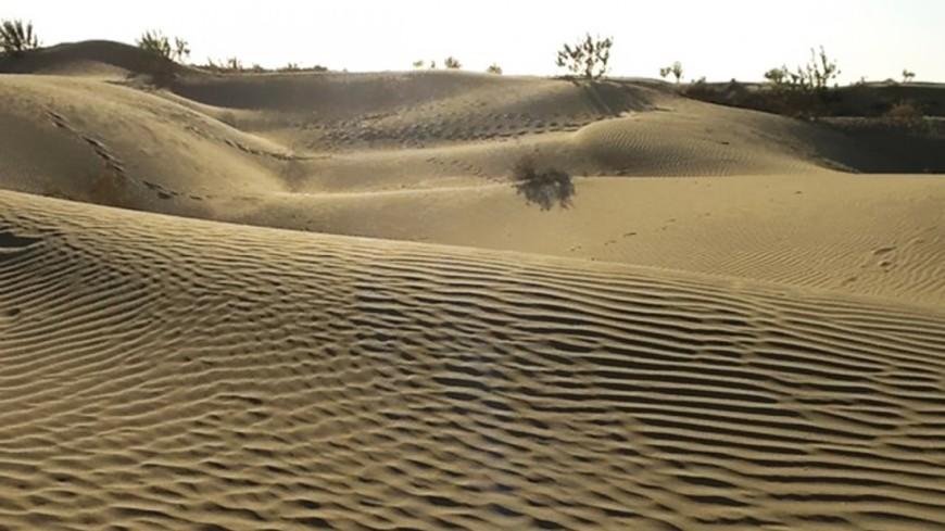 В Сахаре спасли 386 заблудившихся мигрантов