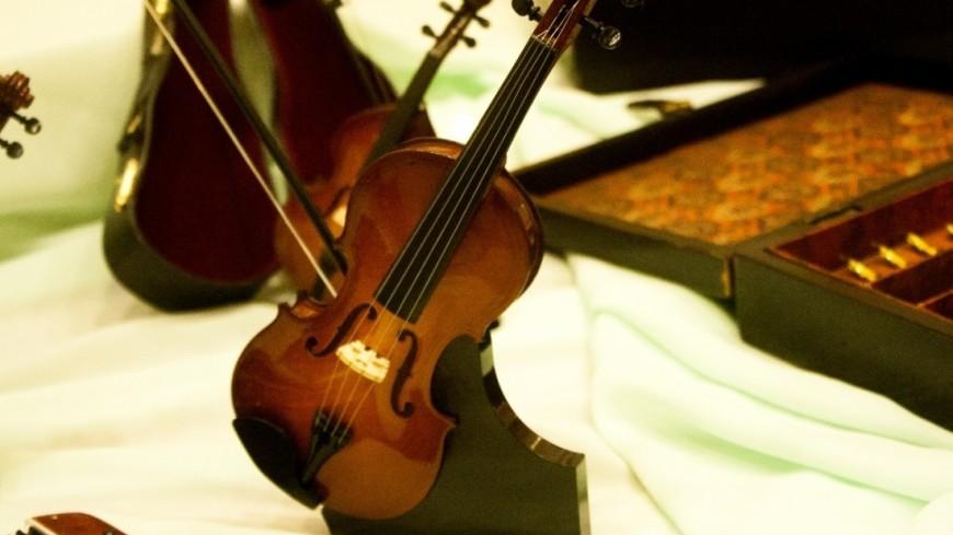 """Фото: Елена Андреева, """"«Мир24»"""":http://mir24.tv/, скрипка, музыка, музыкальные инструменты"""