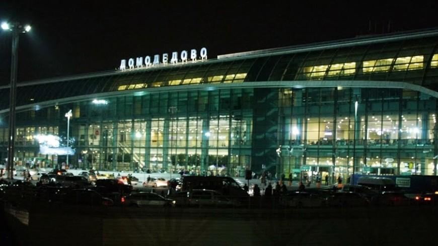 Пьяного сибирского авиадебошира задержали в Домодедово