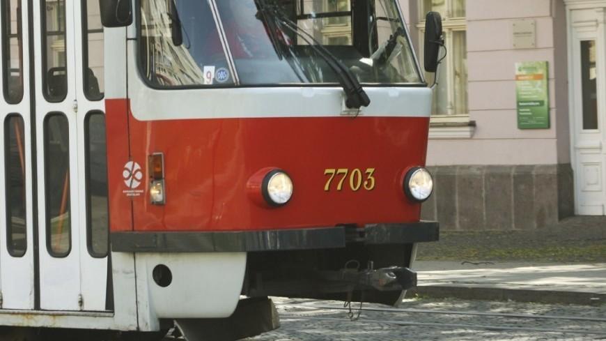 Общественный транспорт встал во Владивостоке из-за шторма