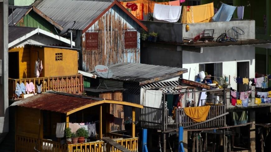 Эпидемия Зика привела к демографическому провалу в Бразилии