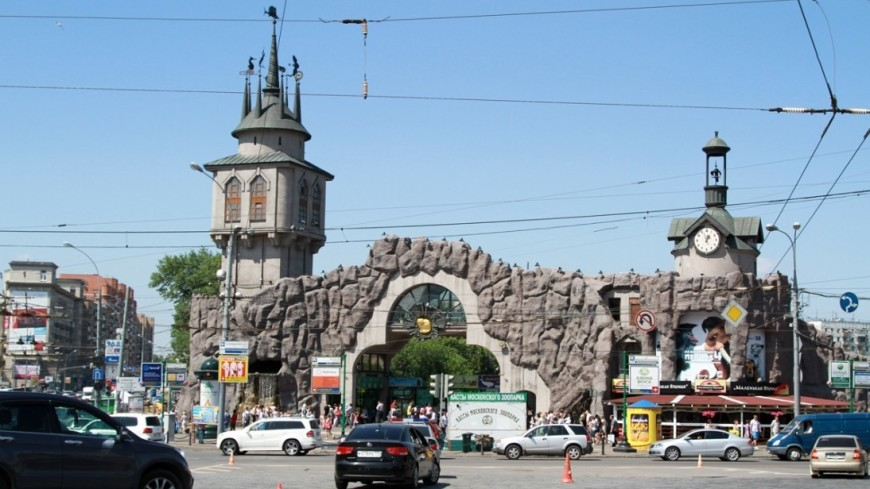 Зоопарк, московский зоопарк