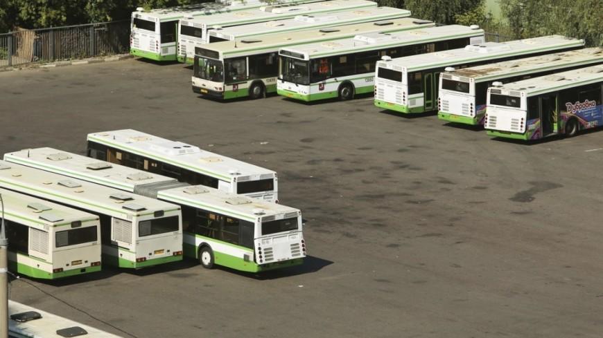 """Фото: Максим Кулачков, """"«Мир24»"""":http://mir24.tv/, мосгортранс, автобусы"""