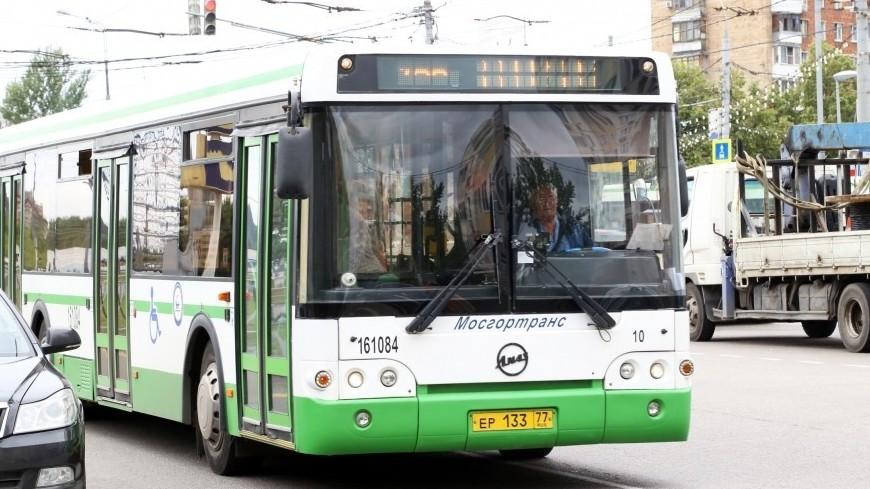 В Москве на время ЧМ-2018 запустят бесплатные автобусы-шаттлы