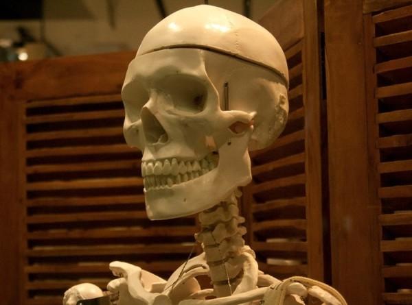 Не были сутулыми: виртуальный скелет неандертальца поразил ученых