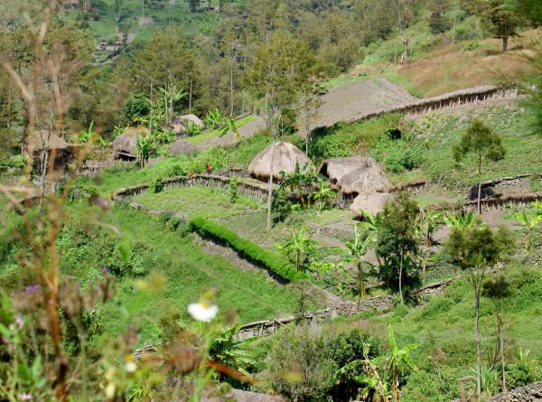 Вдали от цивилизации: тайная жизнь современных аборигенов