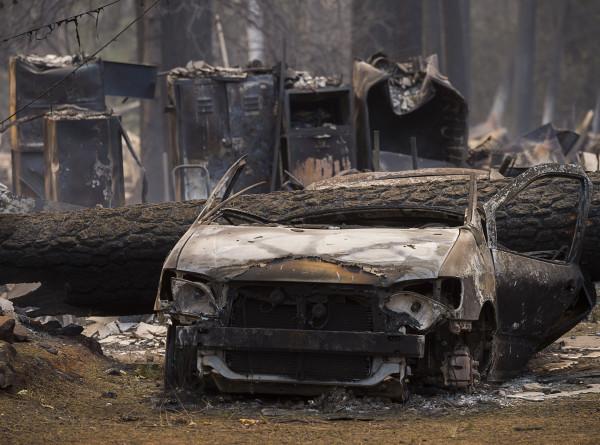 Калифорнийские пожары лишили крова актера Джерарда Батлера и музыканта Нила Янга