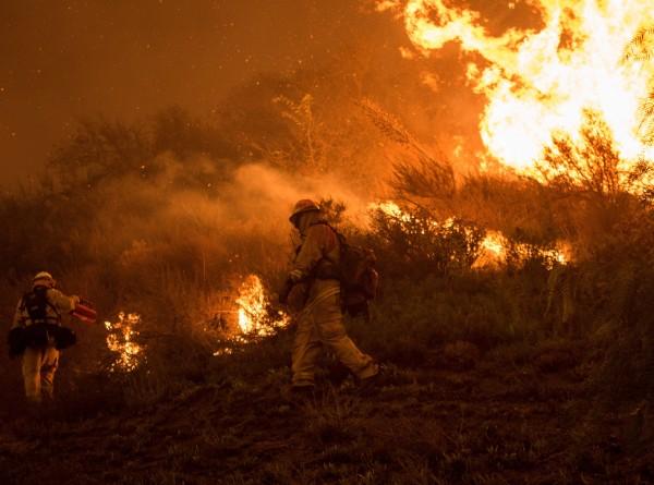 Пожары в Калифорнии унесли уже 74 жизни