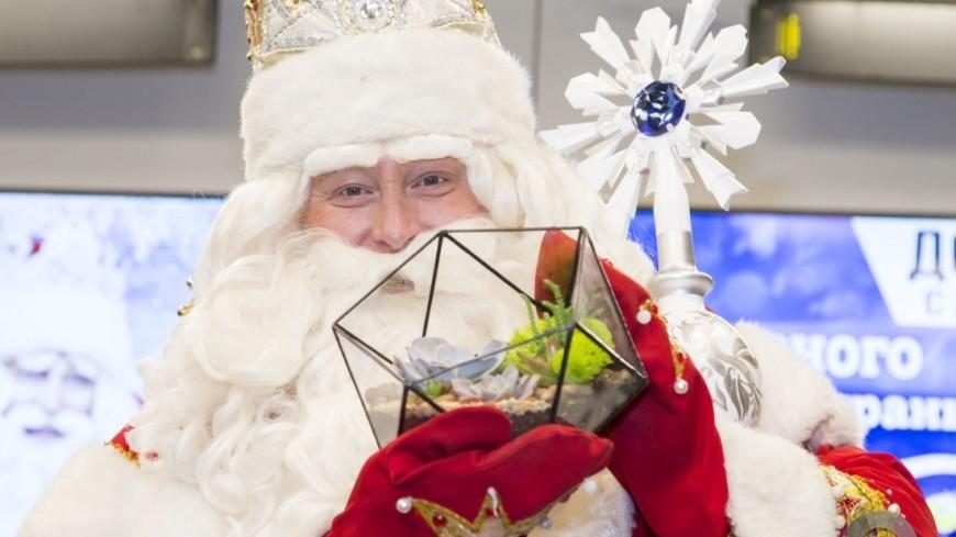"""""""Фото: Максим Кулачков (МТРК «Мир»)"""":http://mir24.tv/, новый год, дед мороз"""