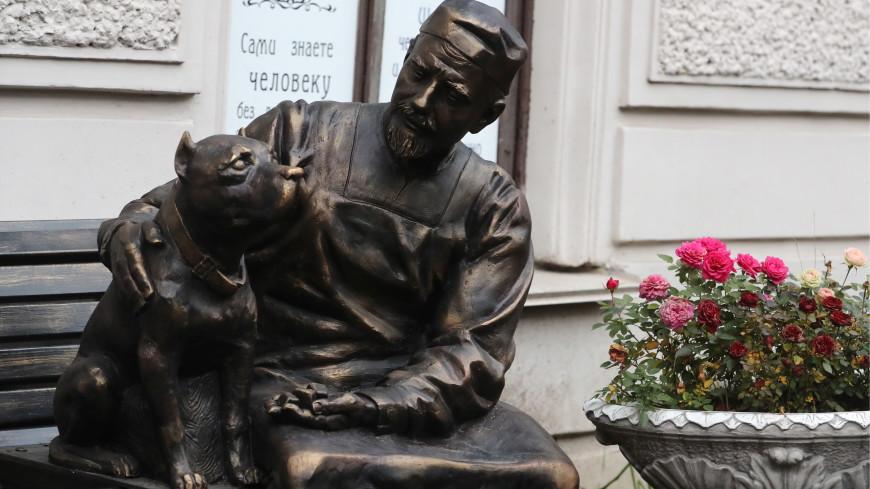 Профессор Преображенский и пес Шарик «прописались» в Петербурге