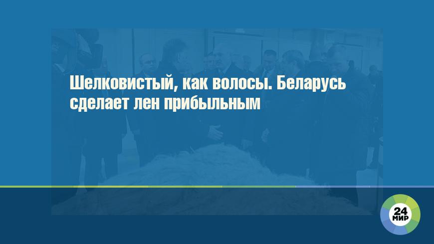 Шелковистый, как волосы. Беларусь сделает лен прибыльным