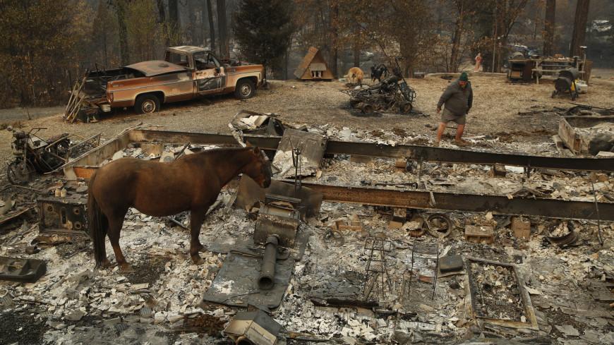 Разрушительные пожары в Калифорнии «поглотили» миллиарды долларов