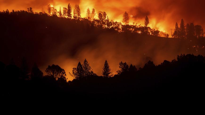 Калифорния в огне: рай превратился в ад