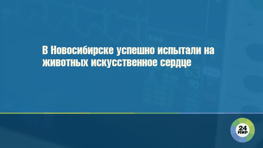 В Новосибирске успешно испытали на животных искусственное сердце