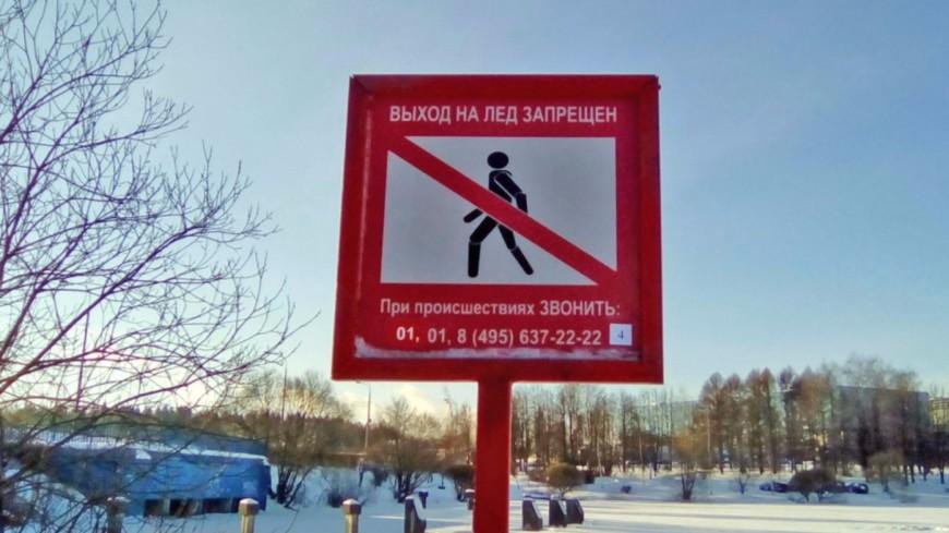 На водоемах Москвы появились знаки о запрете выхода на лед