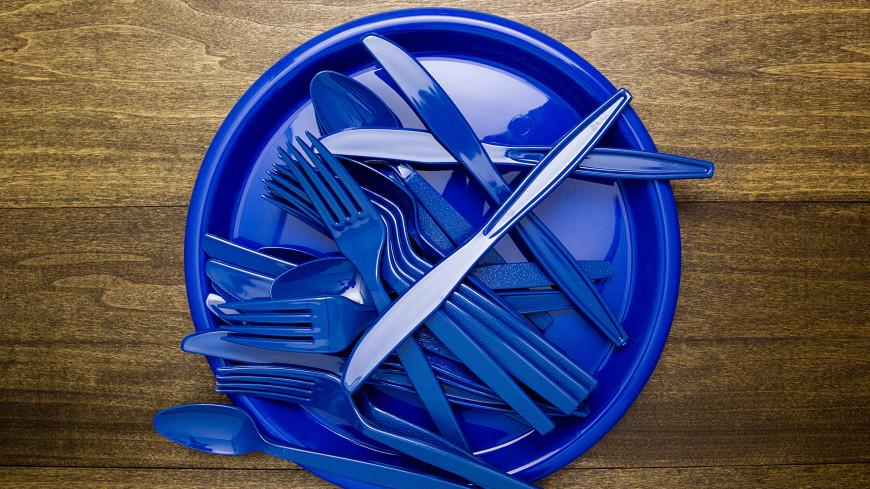 Евросоюз отказался от использования пластиковой посуды