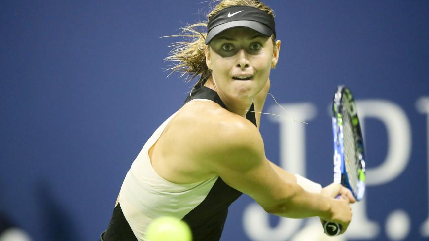 Более 38 млн долларов за 17 лет: WTA подсчитала призовые Шараповой