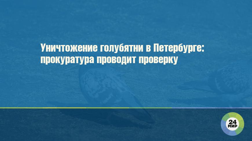 Уничтожение голубятни в Петербурге: прокуратура проводит проверку