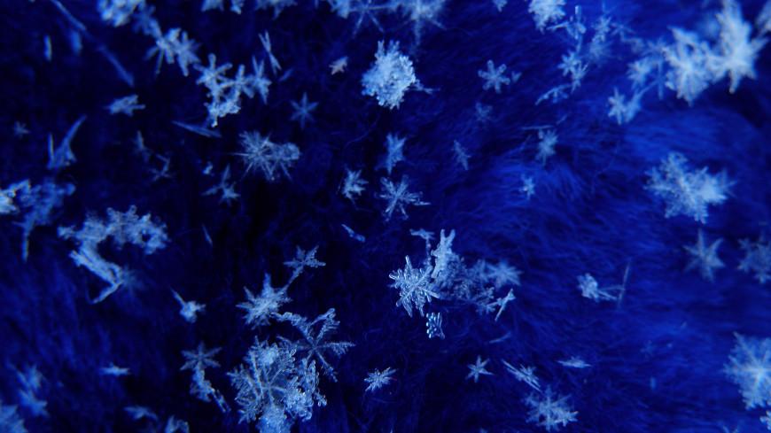 Как снег на голову: в Подмосковье этой ночью увидят «белых мух»