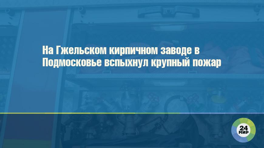 На Гжельском кирпичном заводе в Подмосковье вспыхнул крупный пожар