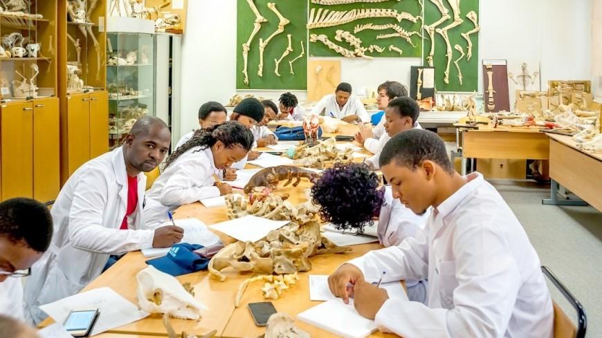 Мастер-класс и экскурсия в патологоанатомический музей АТИ РУДН,скелет, раскопки, динозавр, палеонтология, студент, кости, кость, ,скелет, раскопки, динозавр, палеонтология, студент, кости, кость,