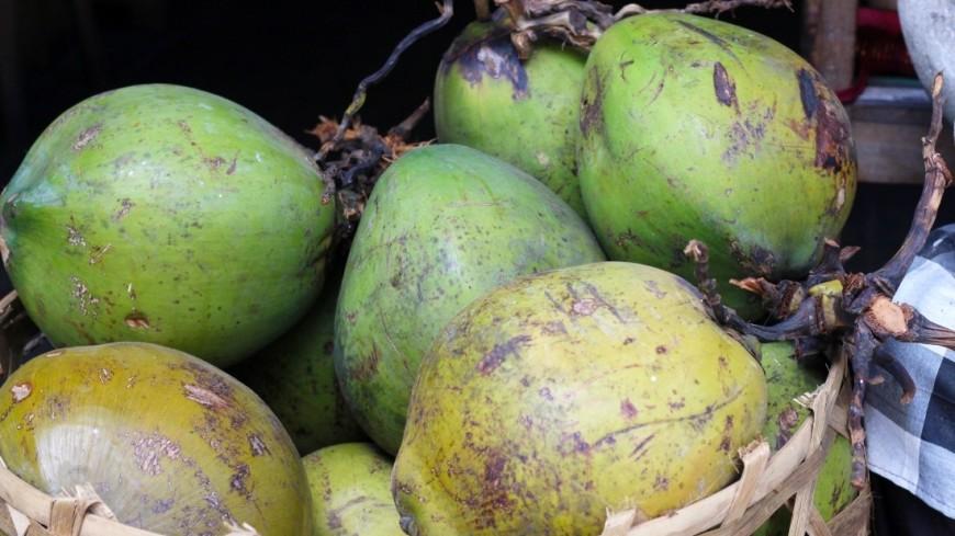 Молодой (зеленый или питьевой) кокос