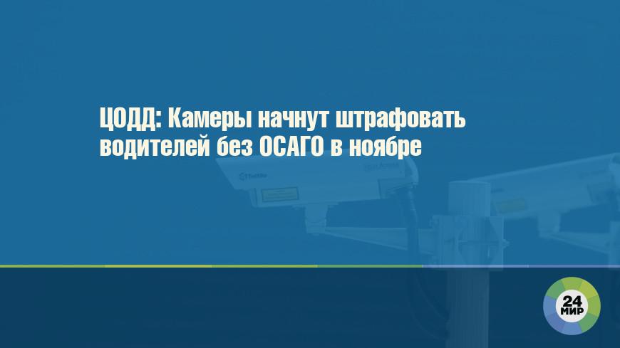 ЦОДД: Камеры начнут штрафовать водителей без ОСАГО в ноябре