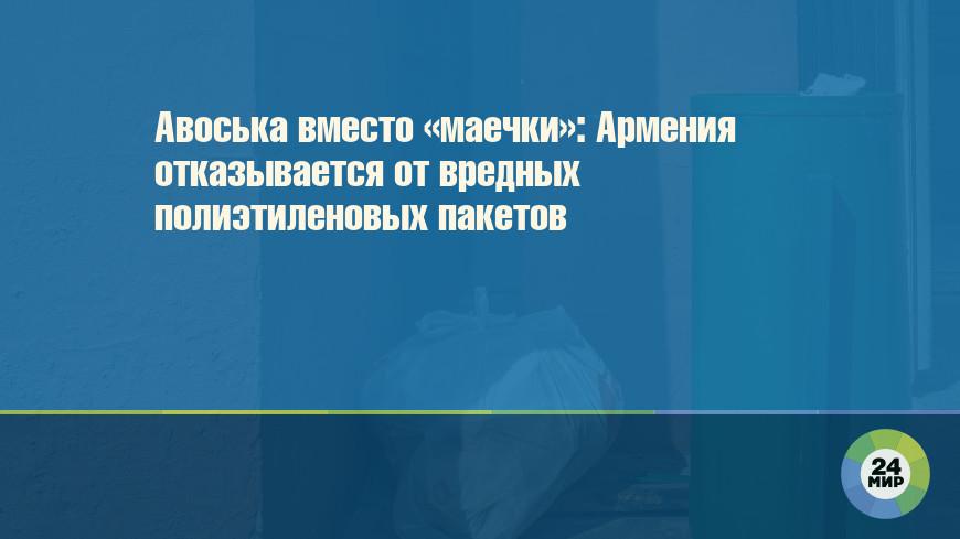 Авоська вместо «маечки»: Армения отказывается от вредных полиэтиленовых пакетов