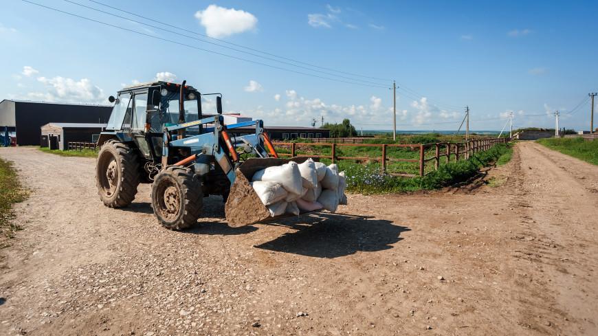 В Беларуси столкнулись авто и трактор: погибли четыре женщины