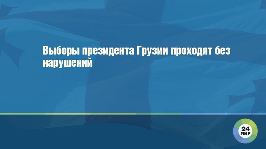 Выборы президента Грузии проходят без нарушений