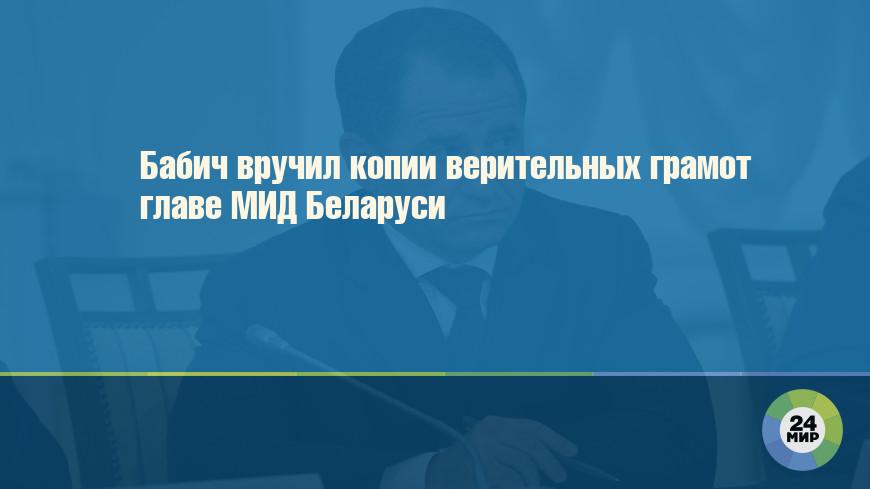 Бабич вручил копии верительных грамот главе МИД Беларуси