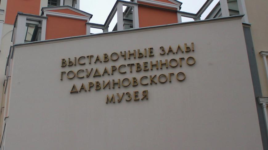 Названы самые популярные у школьников музеи Москвы
