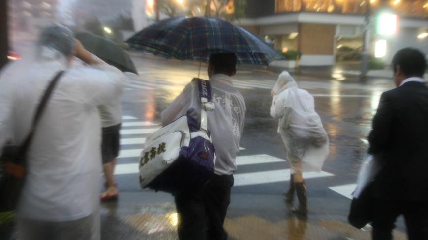 Тайфун «Джеби» в Японии: один человек погиб, пятеро пострадали