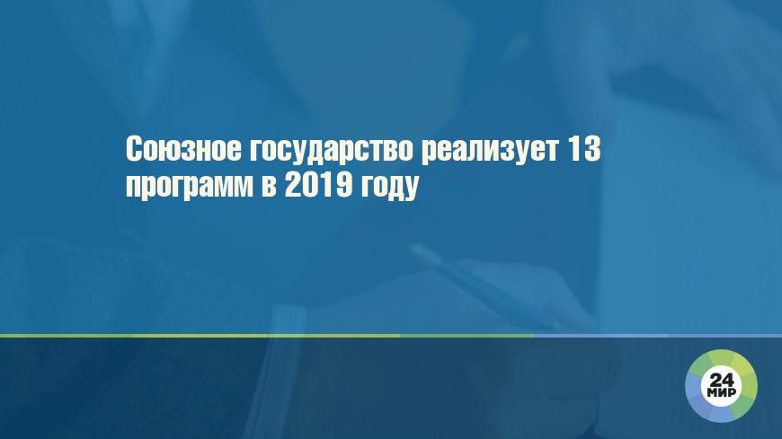 Союзное государство реализует 13 программ в 2019 году