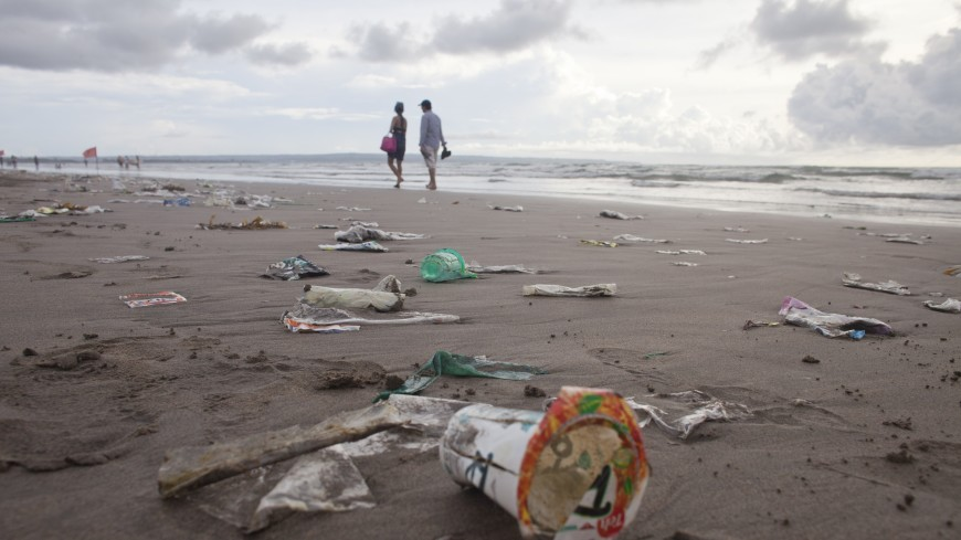 Океан под угрозой: почему морские обитатели глотают пластик