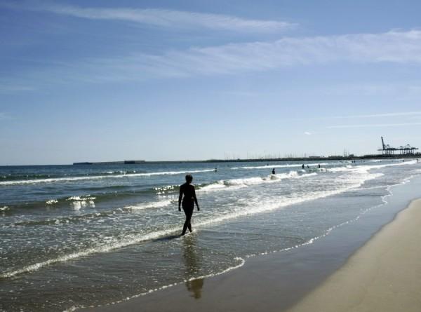 В Мексике мурены атаковали туристов на пляже