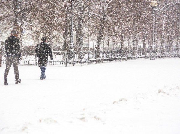 Капризы апреля: Краснодар в шоке от снега, а в Сибири ему не удивились