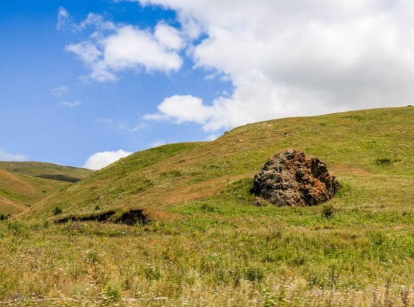 Еда и лекарство: армянские хозяйки готовят блюда из полезных трав