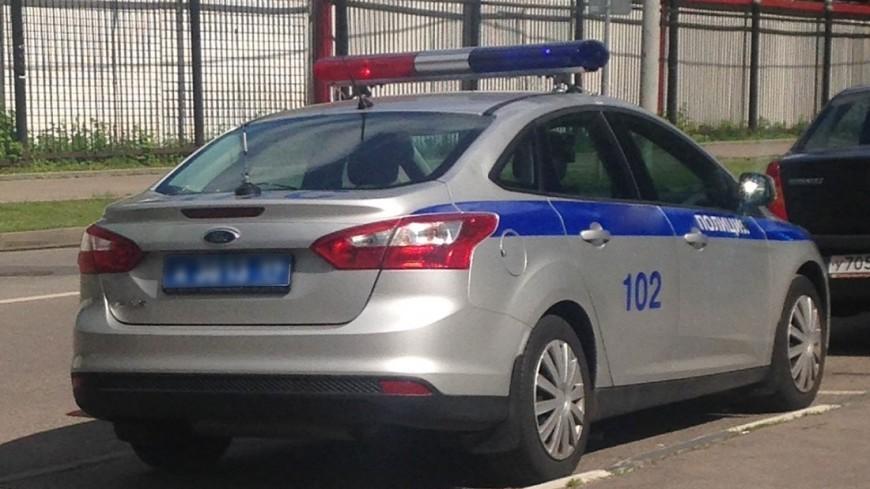 Под Петербургом лихач наехал на инспектора ДПС