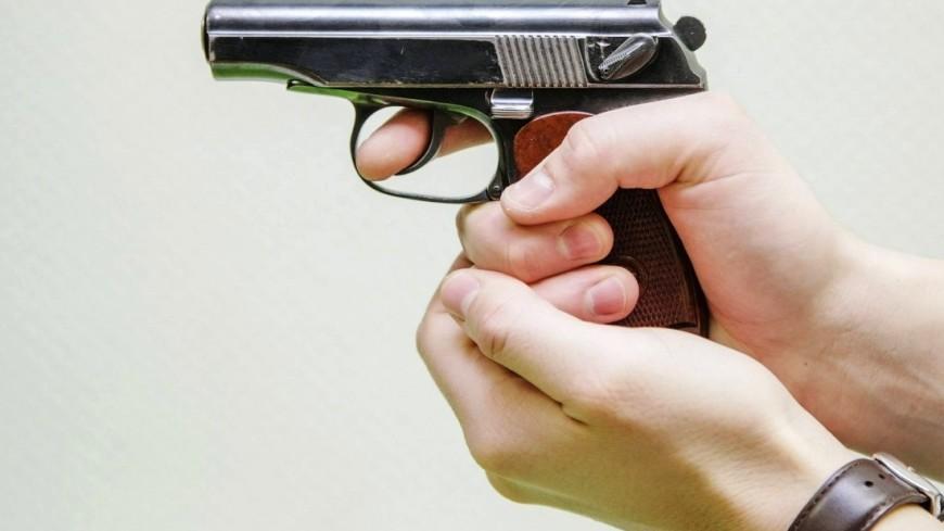 В США мужчина устроил стрельбу во время пикника