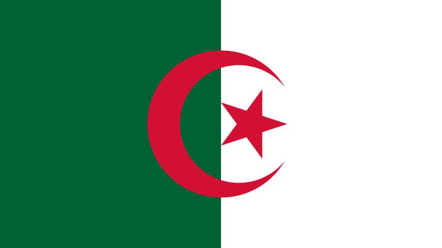 Алжирский парламент объявил пост президента страны вакантным