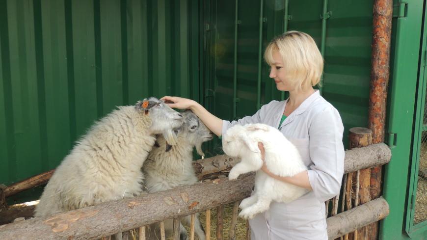 Шанс на спасение: в Бишкеке открылся реабилитационный зоопарк
