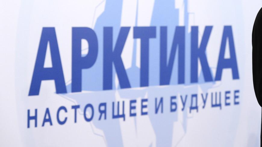 Работа, заказы, деньги: зачем Петербургу арктическая программа
