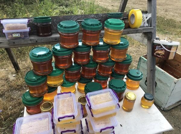 Медовый Спас: как правильно выбирать мед и хранить его