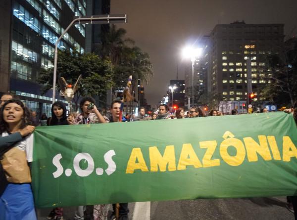Амазония в беде: люди вышли на улицы с требованием защитить лес
